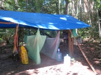 Where we slept in the jungle