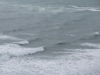 The lone surfer at Piha
