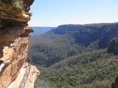 Blue Mountains from the Wentworth side