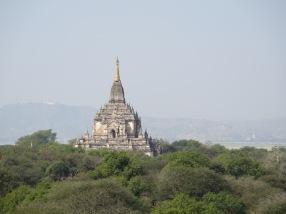 Thatbyinnyu Temple peeping over the trees