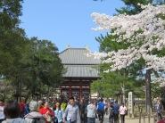 Approaching Todaji