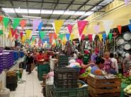 Mercado Municipal Lucas de Galvez